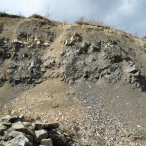 Stop 4: Lošonec quarry